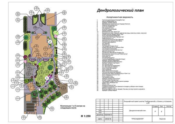 проектирование ландшафтного дизайна в Воронеже
