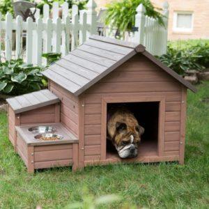 участок для собак